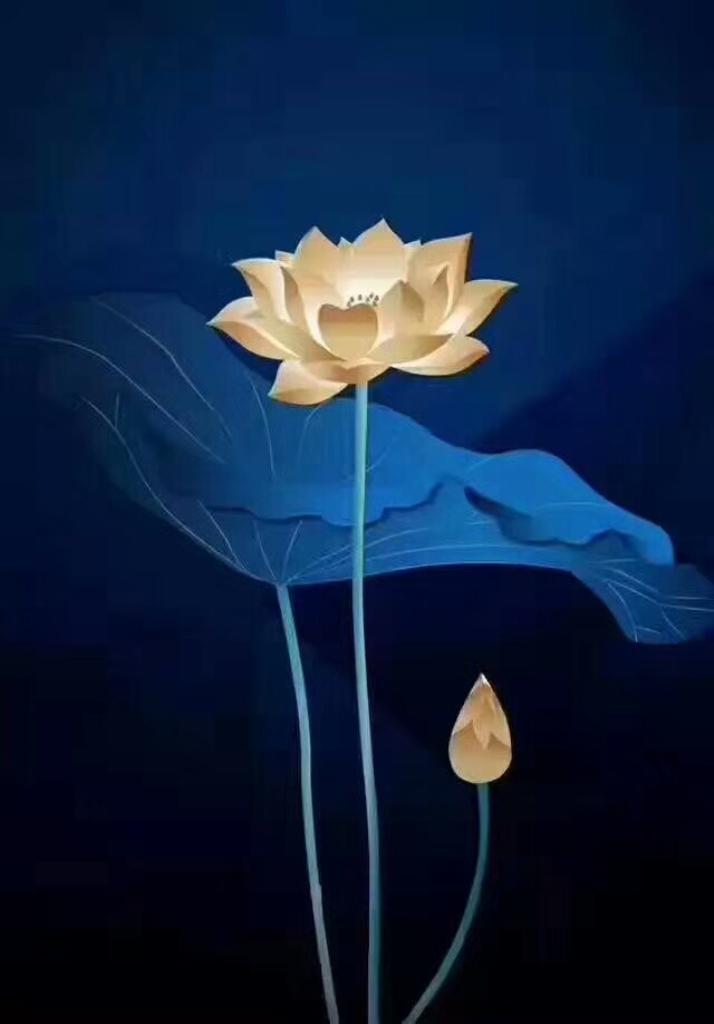 Lotus 168.